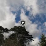 Arrival Of Storm Niklas Berlin, March 31 2015, Video