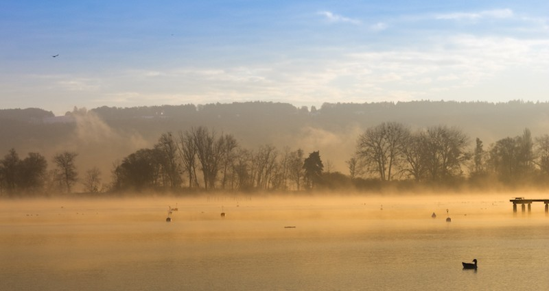Mist On A Lake - November 9, 2016